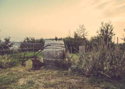 Casa Scaparone - Organic Farm (15)