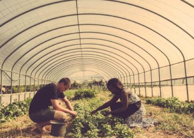 Casa Scaparone - Organic Farm (35)