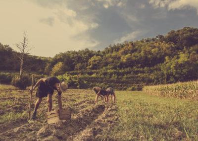 Casa Scaparone - Organic Farm (37)