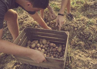 Casa Scaparone - Organic Farm (39)