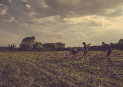 Casa Scaparone - Organic Farm (40)